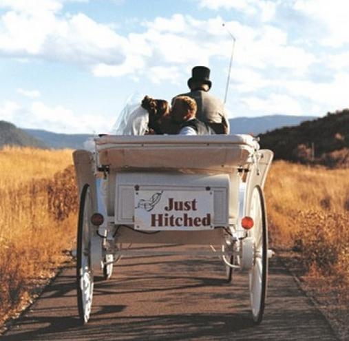 carruaje caballos para bodas