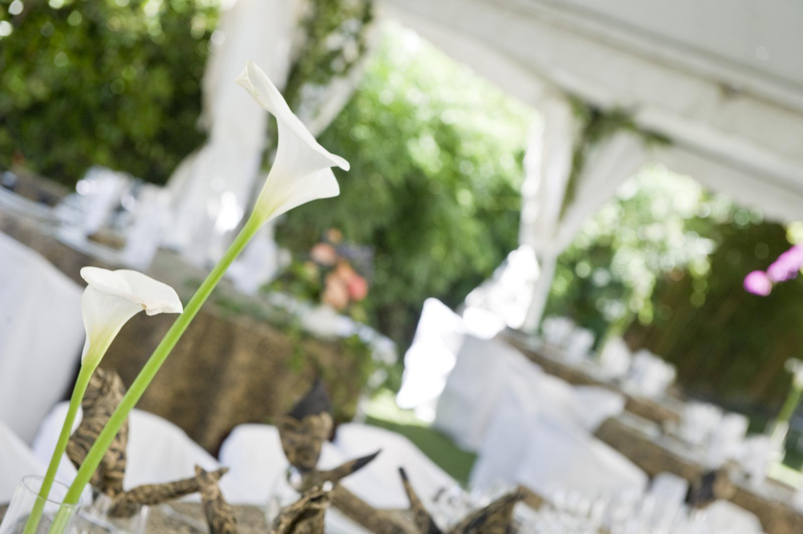 salón de bodas en castellón